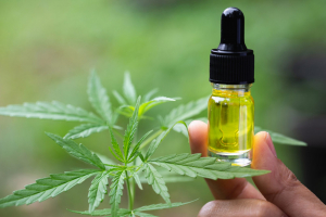 Amazing Health Benefits & Uses of CBD Oil