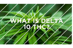 What is Delta-10 THC?