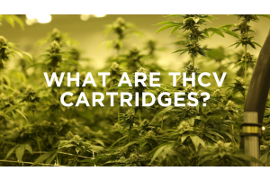 What are THCV Cartridges?