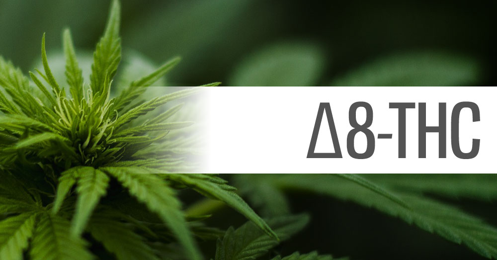 Everything You Need to Know About THC Delta-8