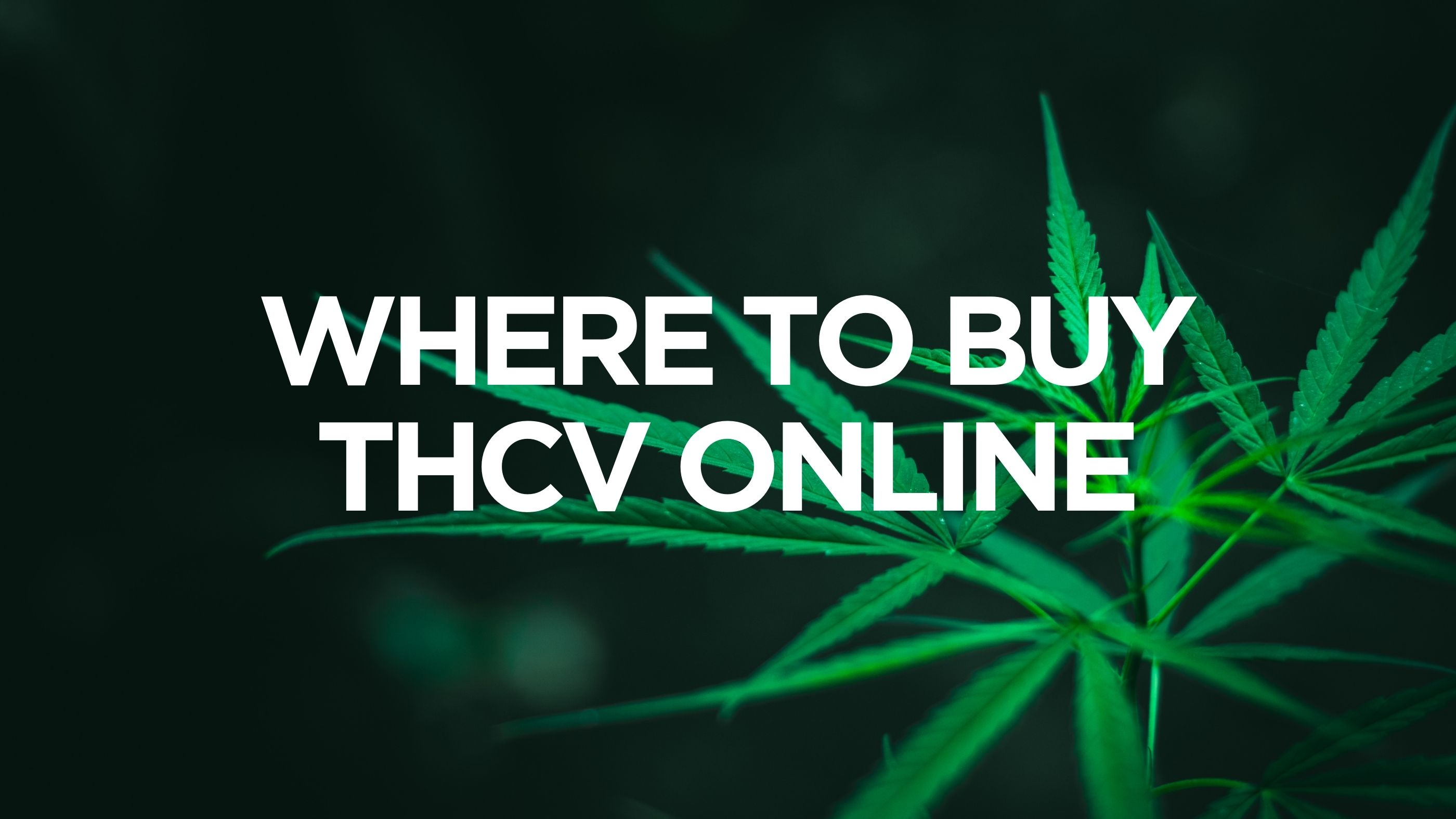 Where to Buy THCV Online